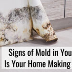 Signs of Mold in Your House- Is Mold in Your Home Making You Sick?