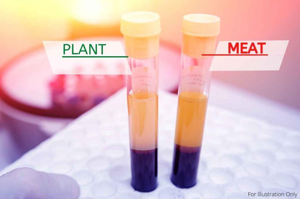 Test tubes of platelet rich plasma showing the difference between plasma taken between subject in The Game Changers Documentary after eating a plant-based meal or a meat-based meal.