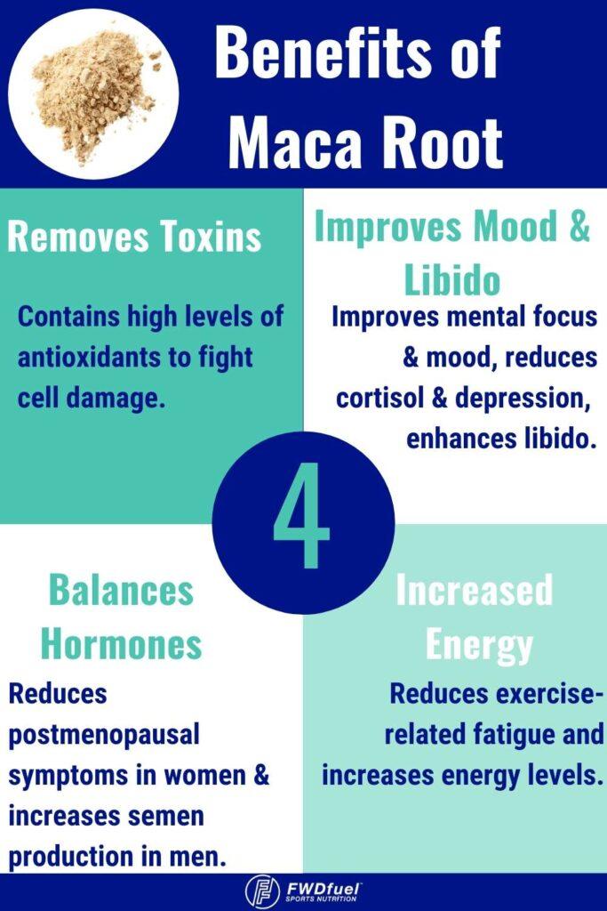 Health Benefits of Maca Root Infographic